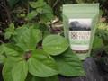 Mamaki Hawaiian tea