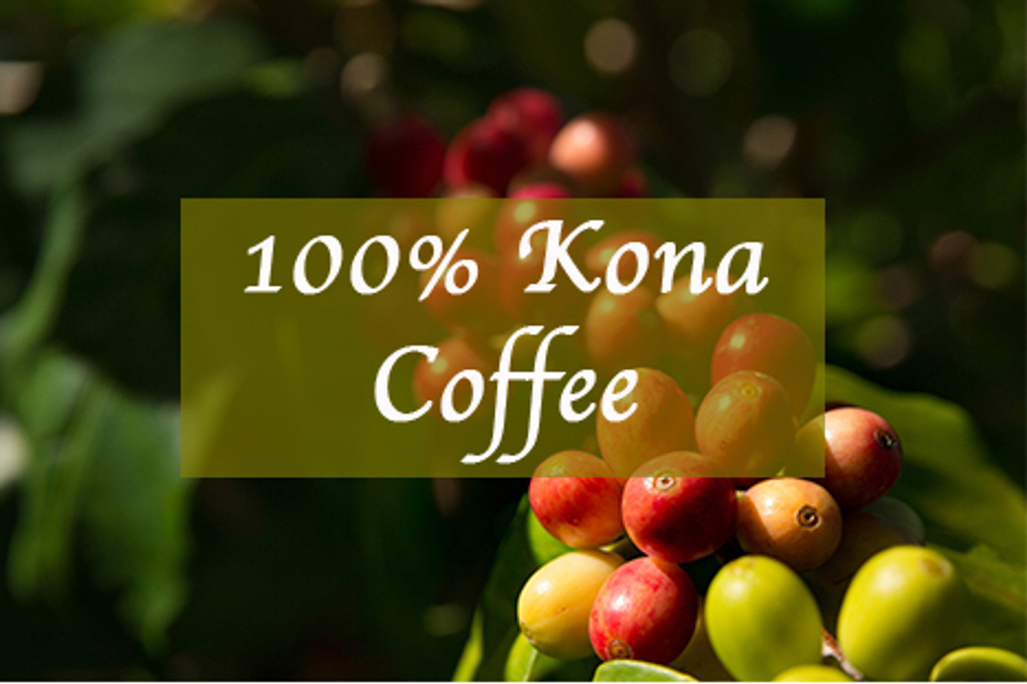 Know your Kona Coffee