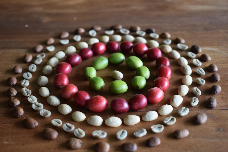 Where is Kona Coffee Grown?