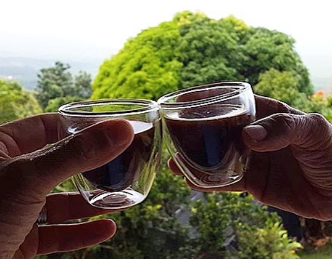 The History of Hala Tree Coffee