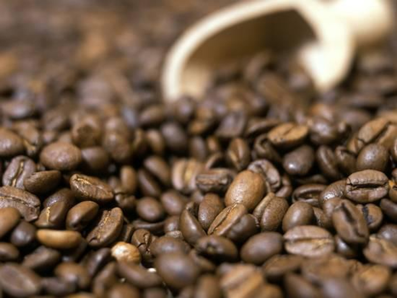 How to tell if your coffee is fresh?