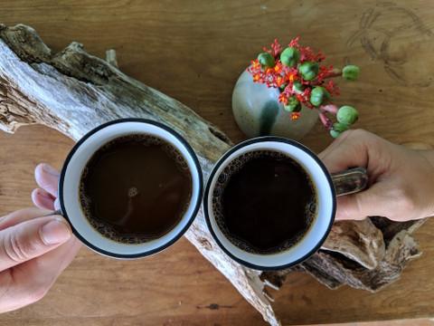 Why Drink Organic Coffee?