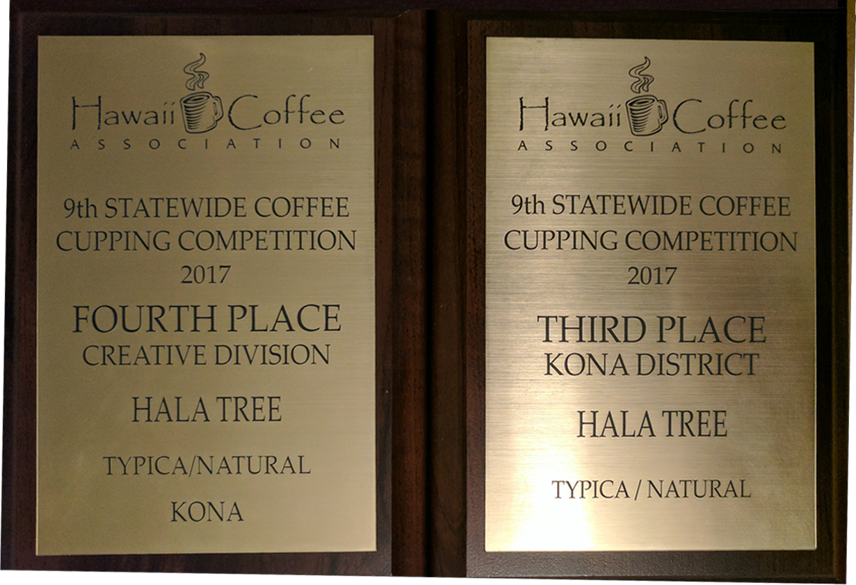 Hawaii Coffee Association 4th place
