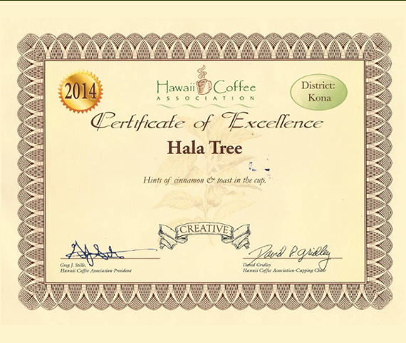 Certificate Of Excellence Hawaii Coffee Association Award