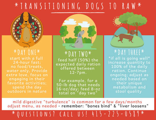 SFR CARD - TRANSITIONING DOGS TO RAW - FREE