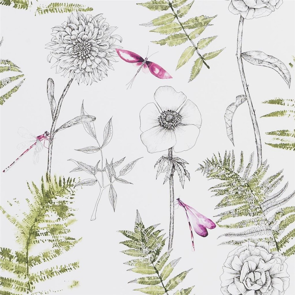 Acanthus - Moss