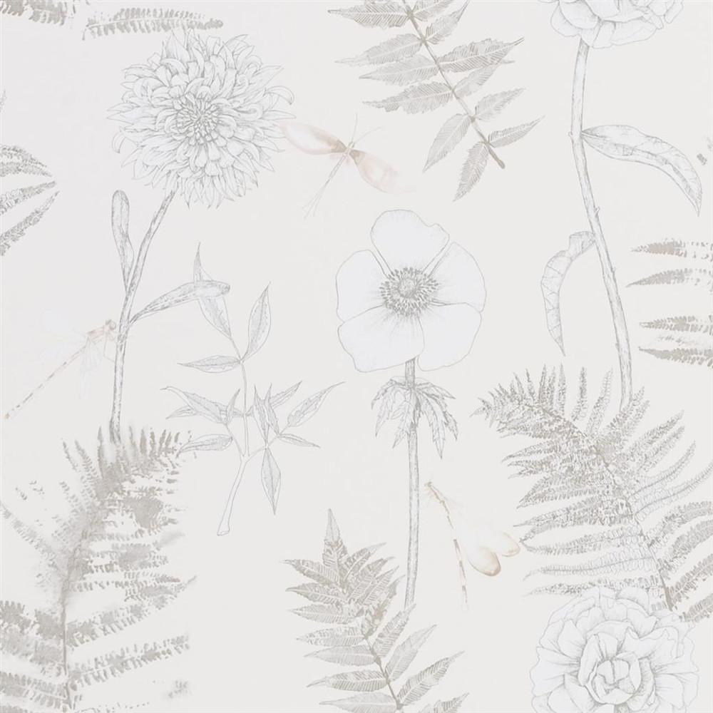 Acanthus - Ivory