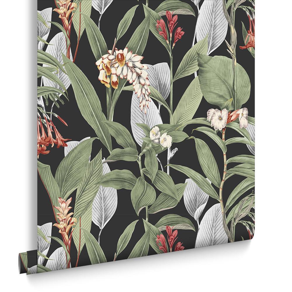 Botanical - Black Wallpaper
