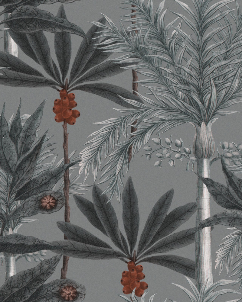 Madagascar - Grey