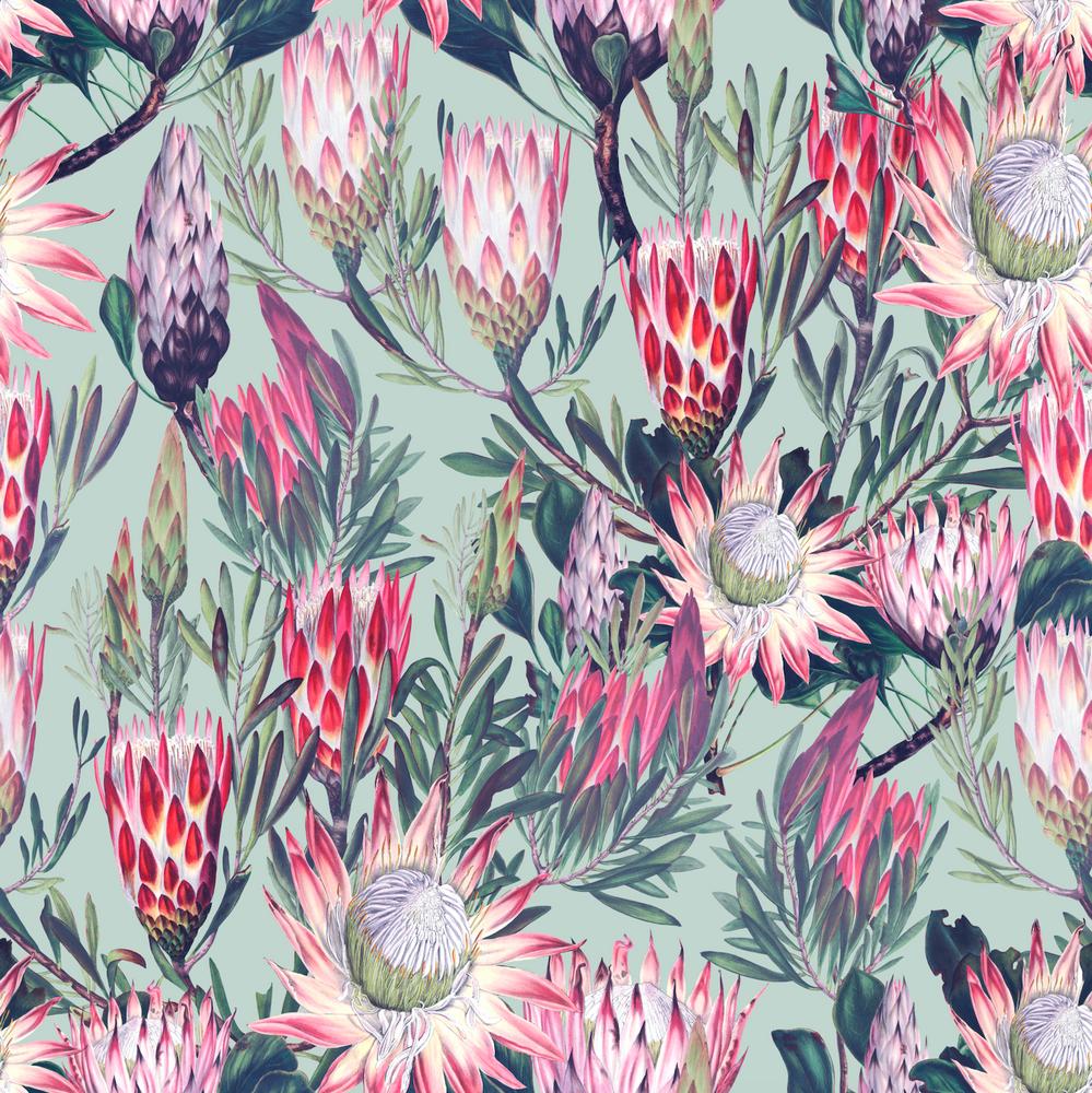 Mural - King Protea Aqua (Per Sqm)