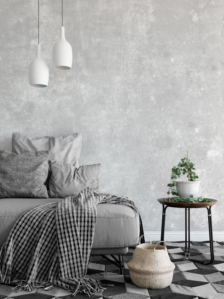 Mural - Concrete Wash Grey (Per Sqm)
