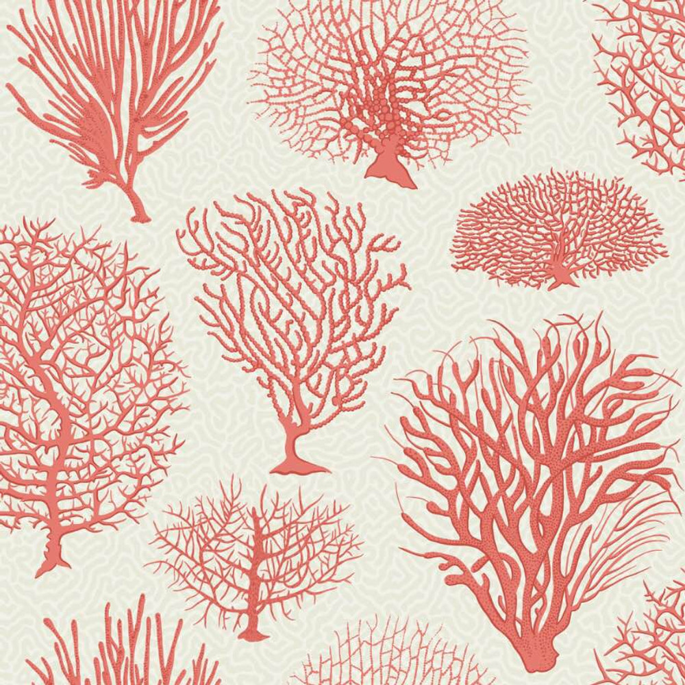 SEAFERN - CORAL RED