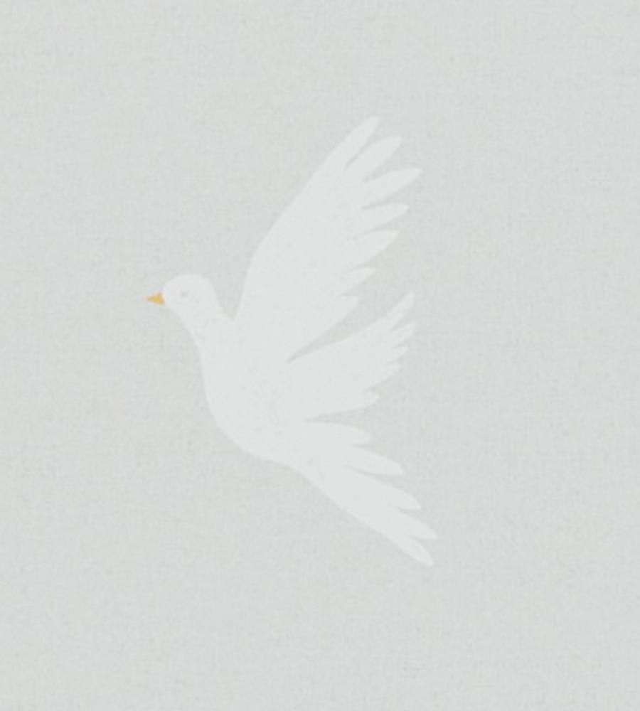 Paper Doves - Dove Grey