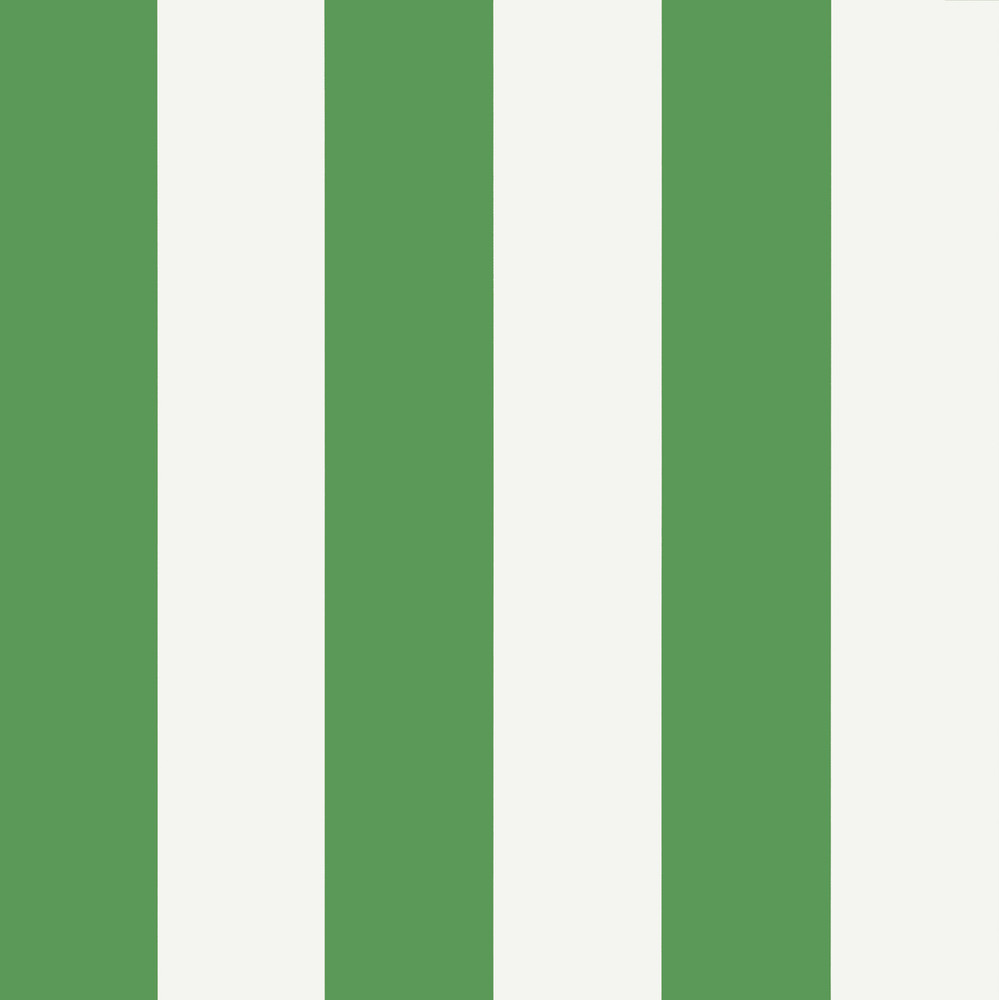 Summer Stripe - Green