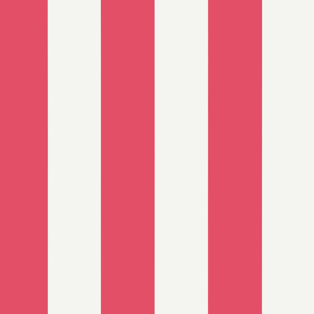 Summer Stripe - Raspberry