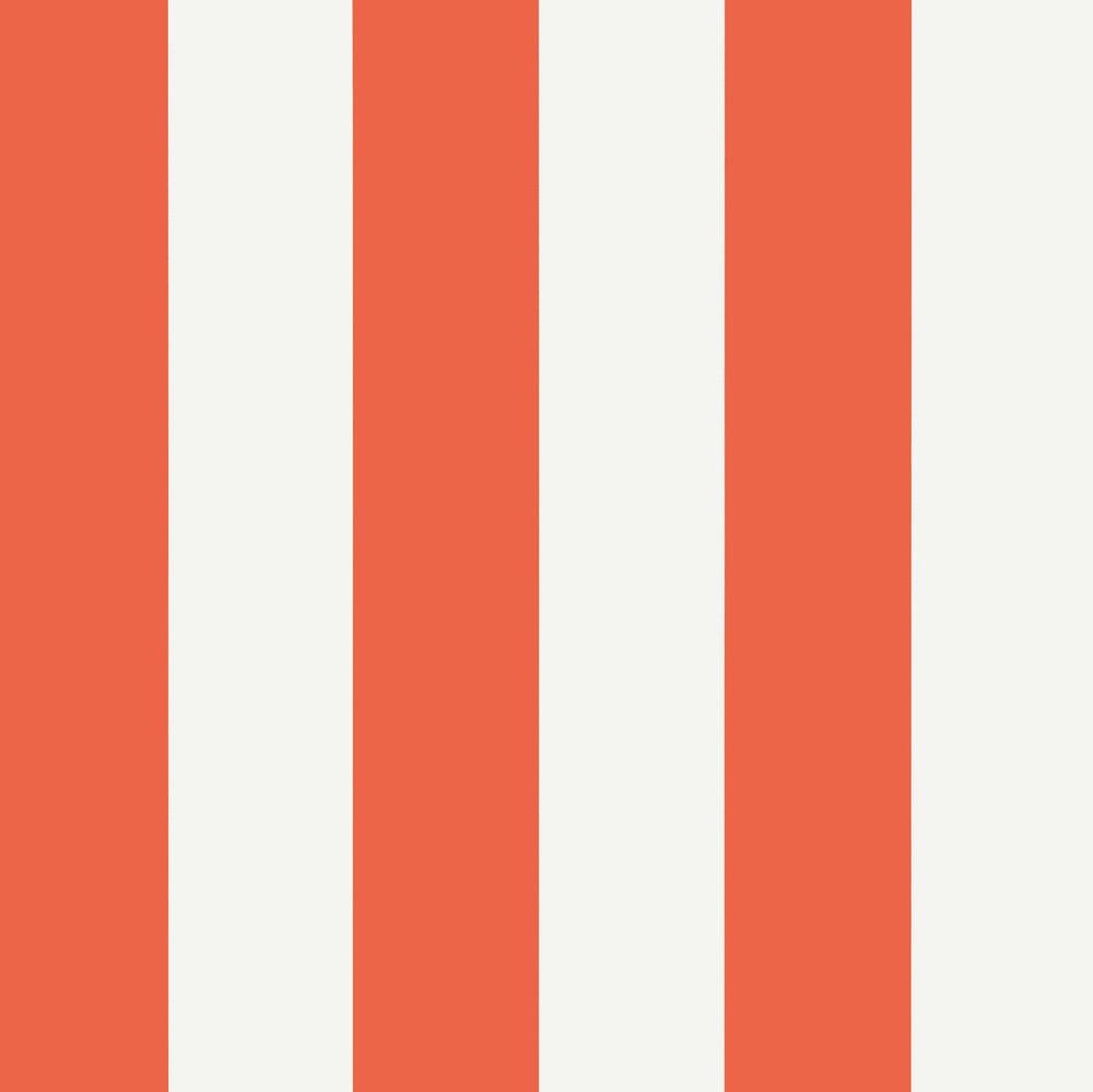 Summer Stripe - Coral