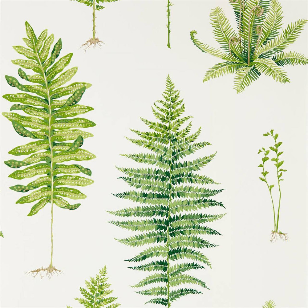 Fernery - Botanical Green