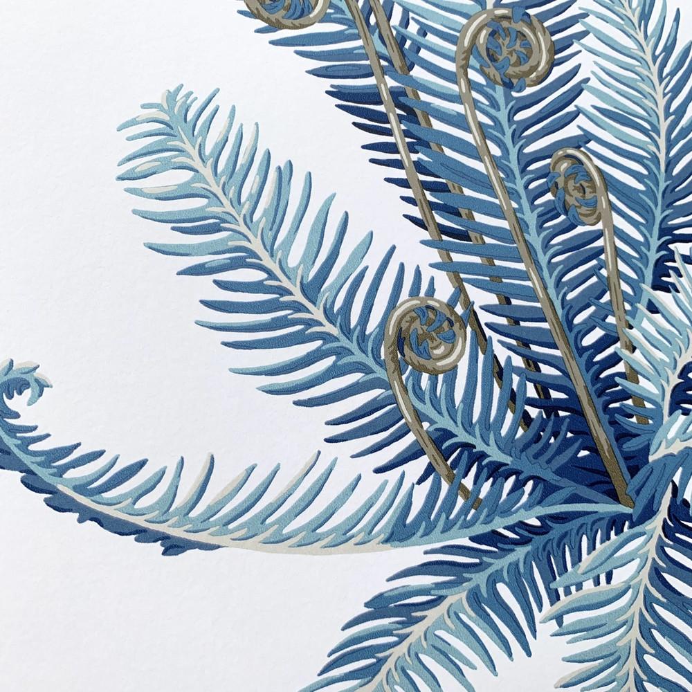 Fernery - China Blue