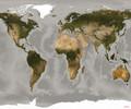 Mural - World (3.0m X 2.5m)