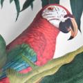 Parrots Of Brasil - Light