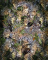 MURAL - WILD CATS (2m x 2.5m)