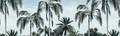 Mural - Aloha Blue (Per Sqm)