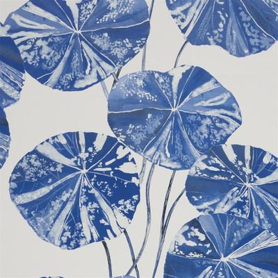 Brahmi - Cobalt Blue