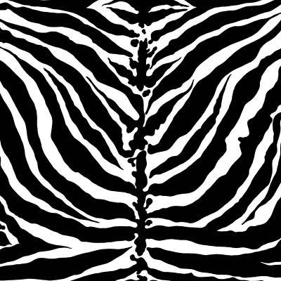 Tiger Stripe - Monochrome