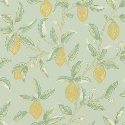 Lemon Tree - Sage