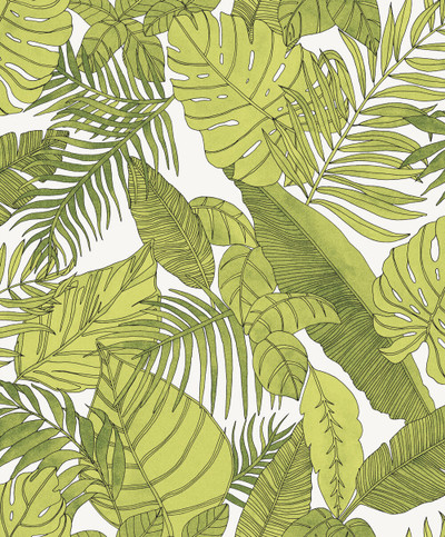 Tropical - Tropical Green