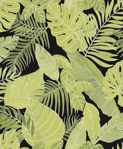 Tropical - Vivid Green / Matt Black