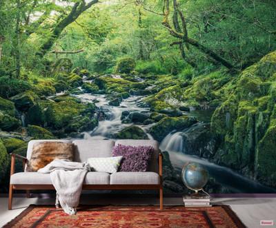 Mural - Green Tales (4.0m X 2.5m)