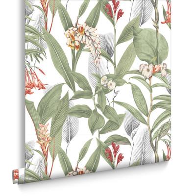 Botanical - Powder Wallpaper