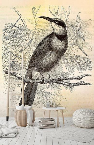 MURAL - VINTAGE BIRDS 2 (2m x 2.7m)