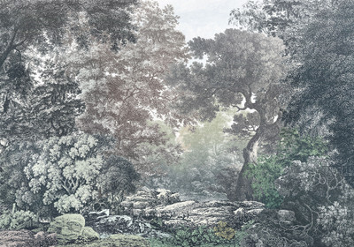 MURAL - FAIRYTALE FOREST (4.0m x 2.8m)