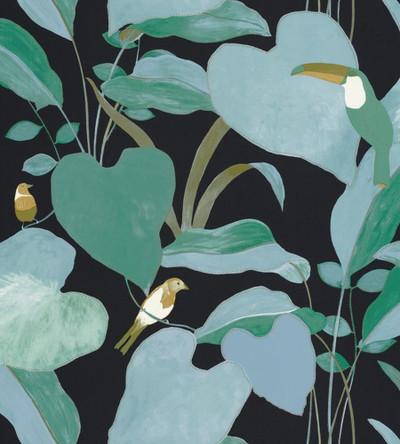 AMAZONIA - BLACK / GREEN