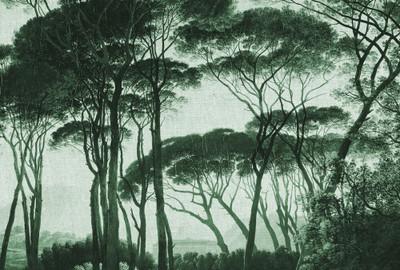 Mural - Treetops 2 (4m X 2.7m)