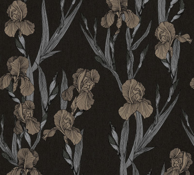 Hechter Iris - Black / Neutral