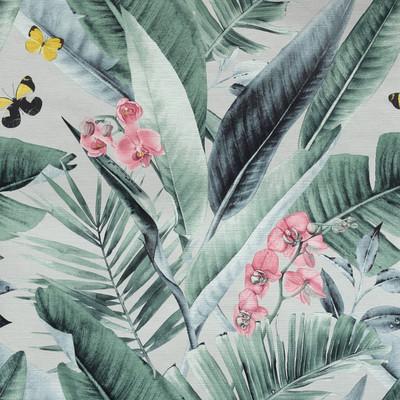 Lush Tropical - Multi