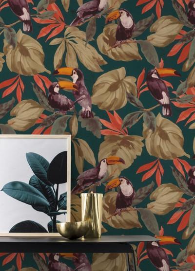 Toucan Forest - Multi