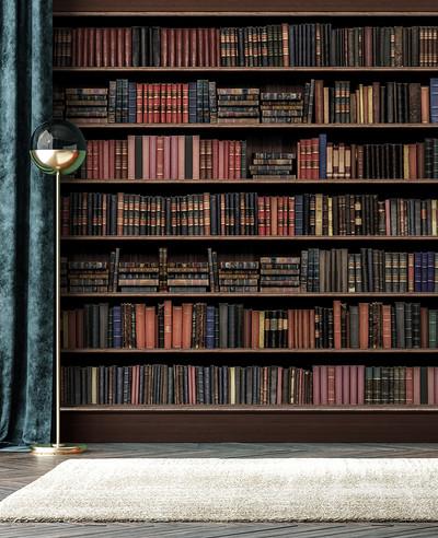 Mural - Library Hogwarts (Per Sqm)