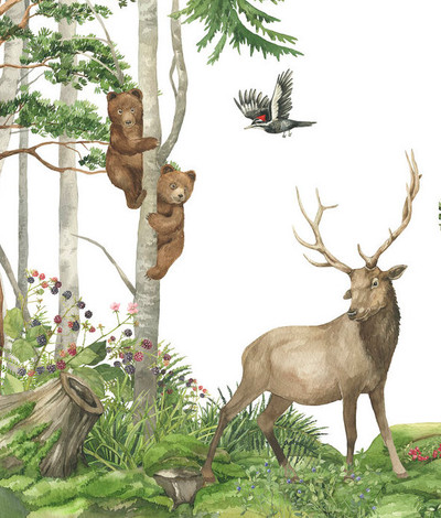 Mural - Nordic Forest Friends (Per Sqm)
