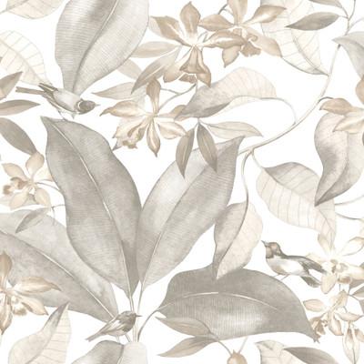 birdsong wallpaper, natural floral, foliage wallpaper