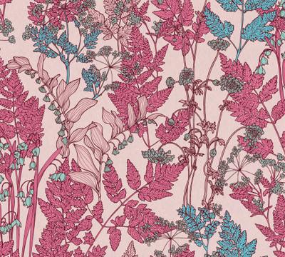 Cadencia - Shades of Pink