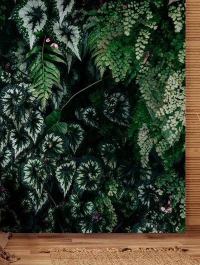 Mural - Deep Green 2 (4m x 2.7m)