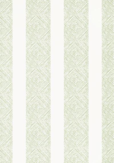 Clipperton Stripe - Green