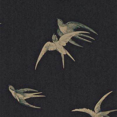 Swallows - Black