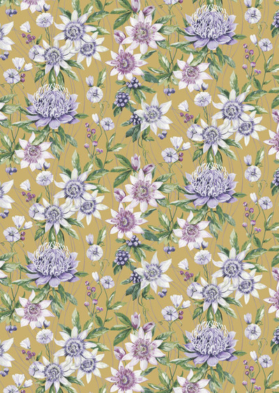 Passiflora - Ochre
