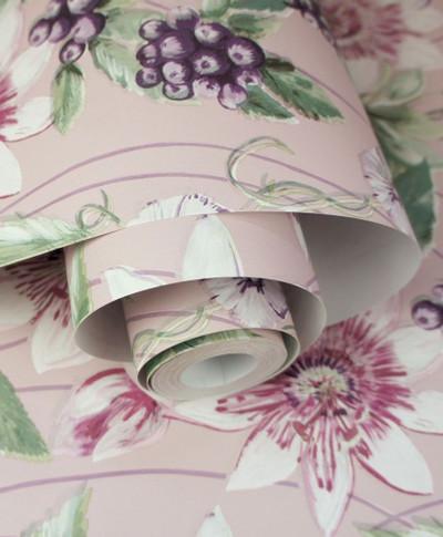 Passiflora - Pink