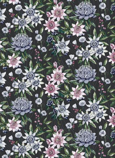 Passiflora - Black